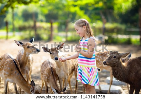 Child feeding wild deer at petting zoo. Kids feed animals at outdoor safari park. Little girl watching reindeer on a farm. Kid and pet animal. Family summer trip to zoological garden. Herd of deers. #1143141758
