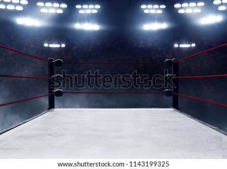 Professional boxing ring  #1143199325