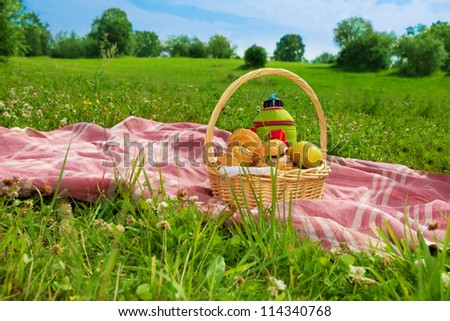 holiday picnic on green grass in park #114340768
