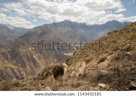 Colca Canyon is a canyon of the Colca River in southern Peru, located about 160 kilometres northwest of Arequipa. #1143432185