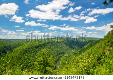 Pine Creek Gorge, also called the Grand Canyon of Pennsylvania. A 47 mile long, 1000 foot deep gorge that winds through north-central Pennsylvania. #1143493193