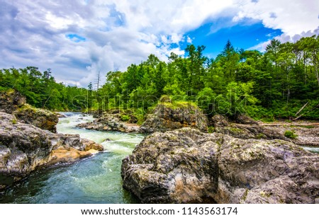 Mountain forest river landscape. Forest river in mountains. Mountain forest river view #1143563174