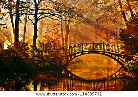 Autumn - Old bridge in autumn misty park #114385732
