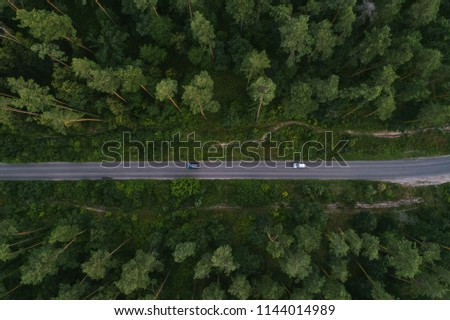 Aerial view of a winding road in the forest