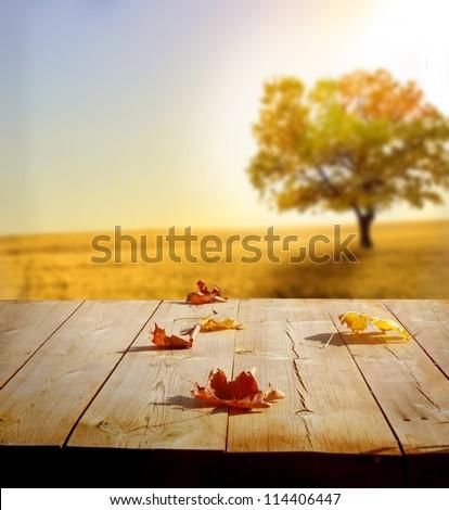 autumn background #114406447