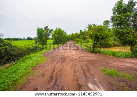Rural road in Thailand It's a dirt road. #1145452991