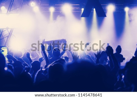 Crowd at concert - summer music festival #1145478641