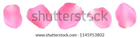 five rose petals #1145953802