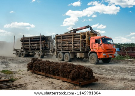 Vologda, Russia - july 17, 2018: Full load truck carries wooden logs. Logging, transportation of wood #1145981804