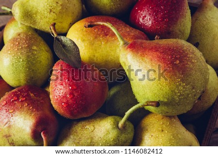 Pears with water drops. Pears harvest. Fruit background. Fresh organic pears, selective focus. Juicy flavorful pears of rustic background. Free space for text. Autumn nature concept #1146082412