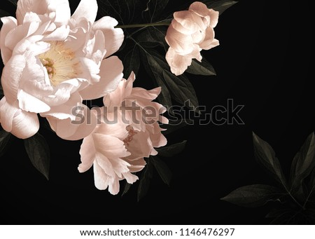Floral vintage card with flowers. Peonies, tulips, lily, hydrangea on black background.  Template for design of wedding invitations, holiday greetings, business card, decoration packaging