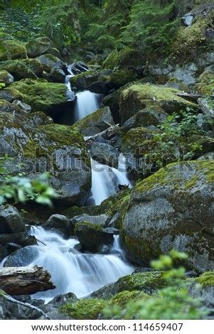 Small Water Cascades Creek in Rocky Mountains, Montana, USA. #114659407