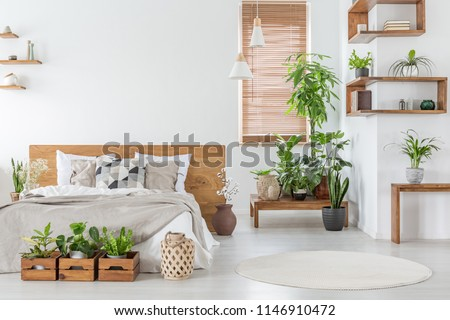 Real photo of a botanical bedroom interior with wooden shelves, tables, double bed, plants and empty wall next to a window with blinds. Place your painting #1146910472