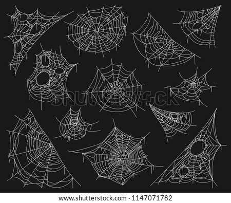 Cobweb set on black. Tangled three-dimensional spider white web for catching insects in spooky darkness. Vector flat style cartoon illustration #1147071782