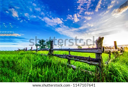 Summer green rural farm fence landscape. Wooden farm fence summer scene. Country farm fence summer evening panorama #1147107641