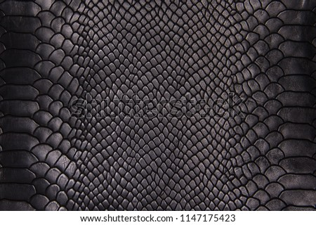 Background texture black leather reptiles Royalty-Free Stock Photo #1147175423