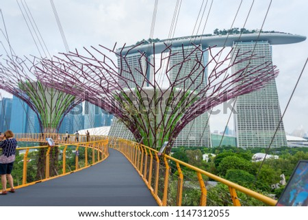 Amazing Supertree an impressive skywalk over the gardens at The Gardens by the Bay is colorful, futuristic park in the bay of Singapore a fantastic feeling wonder the travel destination in Singapore #1147312055