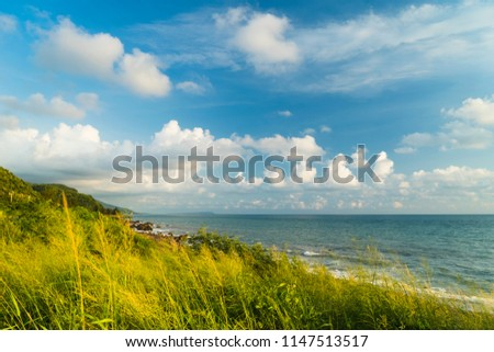 Summer breeze by the sea #1147513517
