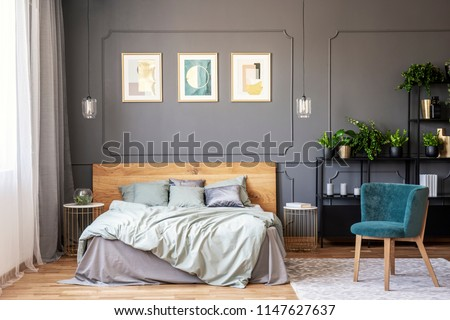 Double bed with grey bedding and wooden headboard standing in dark bedroom interior with window with drapes, gold posters on the wall with wainscoting and fresh plants placed on metal rack #1147627637