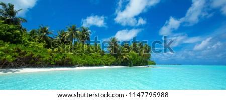 tropical beach in Maldives #1147795988