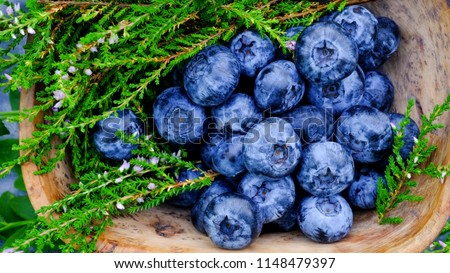 Blueberry antioxidants containing super food from Lapland. Antioxidant berries in a traditional Curly Birch wood bowl #1148479397