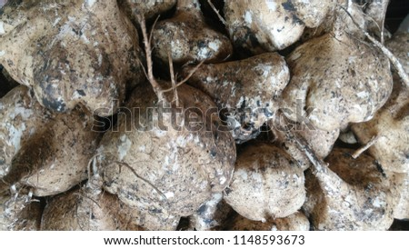 yam with brown shell and white flesh #1148593673