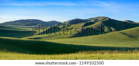 Distant hills. Hilly steppe. Curvy hills. Blue sky and grass. Beautiful plain. Sunny day and hills. Lowland. Hilly horizon. #1149102500