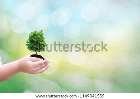 Ecology concept child human hands holding big plant tree with on blurred background world environment  #1149341555