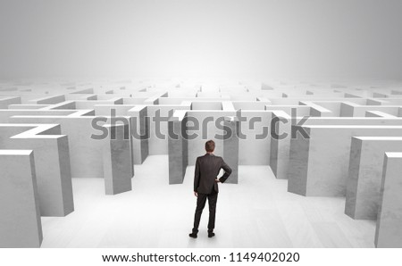 Businessman choosing between entrances in a middle of a maze #1149402020