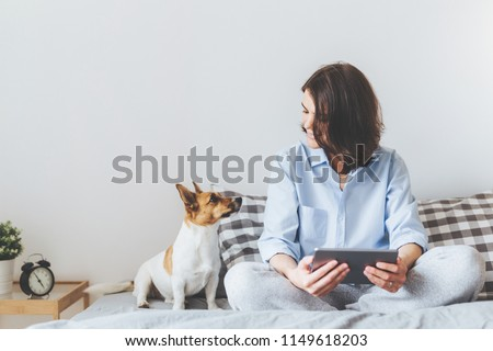 Beautiful brunette female in pyjamas sits on bed in bedroom with her jack russell terrier dog, holds tablet computer, enjoys morning weekend, watches video online, has good relationships with pet #1149618203