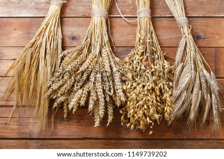 ears of wheat, rye, barley and oats on old wooden background #1149739202