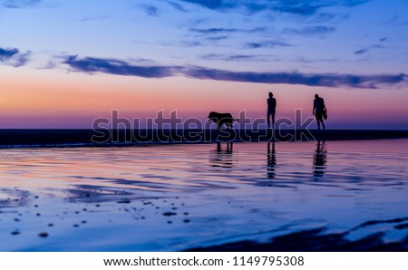 Silhouetted couple walking the dog on the beach at sunset with reflections in the water, Noordwijk, the Netherlands - with copy space.Photo taken on July 31, 2018