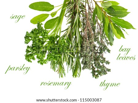 herbs rosemary, sage, bay leaves, parsley and thyme over white background #115003087