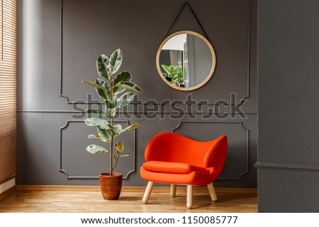 Round mirror hanging on the wall with molding in real photo of dark sitting room interior with orange armchair and fresh potted plant #1150085777