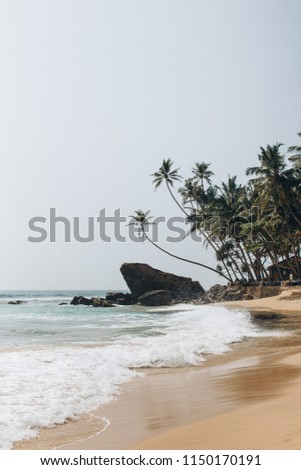 Summer tropical picture, shore washed by the ocean
