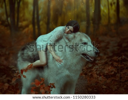 A fragile girl riding on a huge wolf, like Princess Mononoke. Sleeping Beauty. Alaskan Malamute is like a wild wolf. The background is a fabulous forest in warm autumn colors,  orange trees, leaves #1150280333
