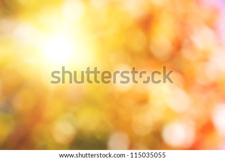 autumnal natural bokeh with sun for background or backdrop #115035055