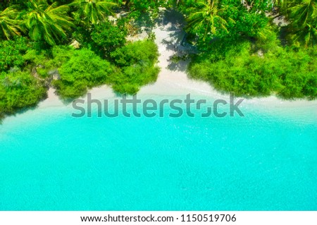 White sand beach with turquoise water and green plants from above #1150519706