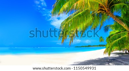 Dream beach with palm trees on white sand and turquoise ocean #1150549931