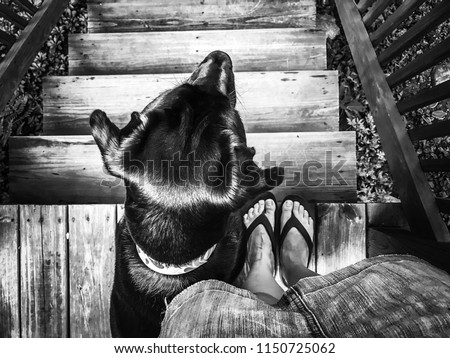 A girl and her dog. Woman's best friend. A black and white photo of Abby and I on the deck, watching wildlife and getting ready for a walk.