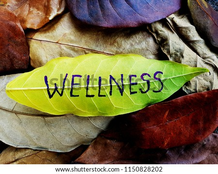 Wellness concept written on leaf Royalty-Free Stock Photo #1150828202