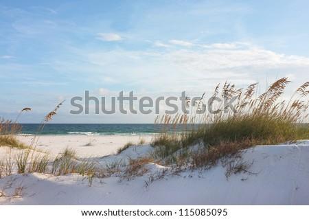 Sand dunes and ocean at sunset, Pensacola, Florida. Royalty-Free Stock Photo #115085095