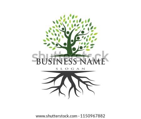 family tree logo template vector illustration #1150967882