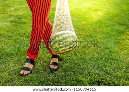 Close up fashion detail, young woman holding net bag with watermelon on a sunny summer day. Food fashion photo #1150994615