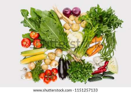 flat lay with various autumn vegetables arranged isolated on white #1151257133