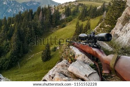 Gun prepared for hunting #1151552228