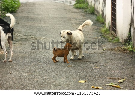 the white male dog and brown puppy #1151573423