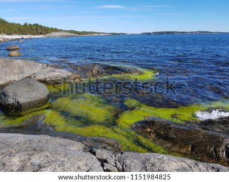 Green rocky seabay #1151984825