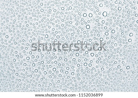 Water drops or rain droplets on glass. #1152036899