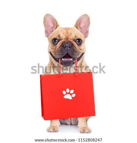 french bulldog  dog with shopping bags ready for discount and sale at the  mall, isolated on white background #1152808247